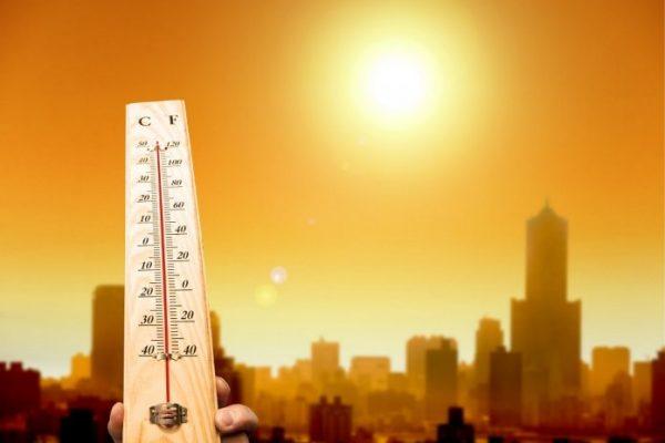 Co maantropologia dozmian klimatycznych?